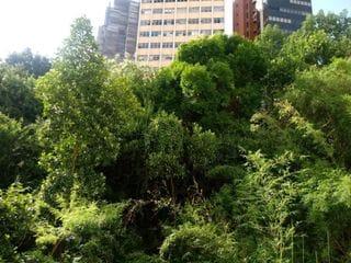 Foto do Apartamento-Apartamento com 2 dormitórios para alugar, 54 m² por R$ 1.600,00/mês - Bela Vista - São Paulo/SP