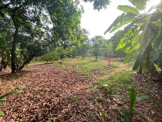 Foto do Chácara-Chácara à venda, Rosa dos Ventos, Aparecida de Goiânia, GO