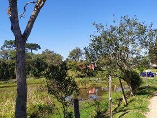 Foto do Chácara-Chácara com 2 dormitórios à venda, 104000 m² por R$ 480.000,00 - Matulão - Tijucas do Sul/PR
