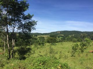 Foto do Chácara-Rural, Zona Rural, Pirenópolis - GO | 213606