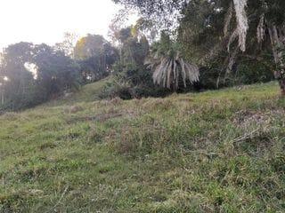 Foto do Chácara-Rural, Zona Rural, Pontalina - GO   950387