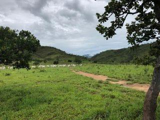 Foto do Chácara-Rural, Zona Rural, Vila Propício - GO | 537111
