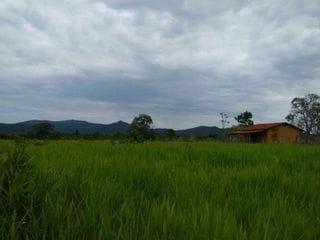 Foto do Chácara-Rural, Zona Rural, Pirenópolis - GO | 251019