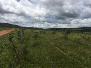 Foto do Chácara-Rural, Zona Rural, Corumbá de Goiás - GO | 195328