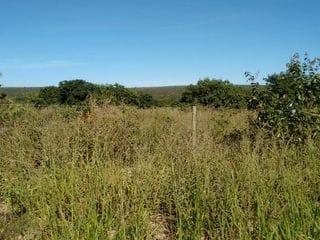 Foto do Fazenda-Fazenda no Norte de Minas Gerais
