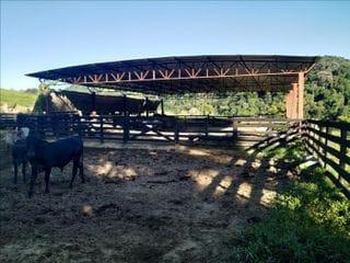 Foto do Fazenda-Fazenda à venda, 879000 m² por R$ 2.000.000,00 - Barra do Bandeira - Bandeira do Sul/MG