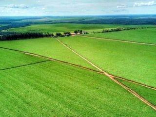 Foto do Fazenda-Fazenda à venda, Setor Boa Vista, Mineiros.