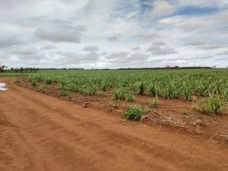 Foto do Fazenda-Fazenda com 5 dormitórios à venda, 1639792 m² por R$ 367.500.000,00 - Arantina - Acreúna/GO