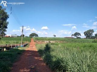 Foto do Fazenda-Fazenda à venda, Viradouro, Viradouro.