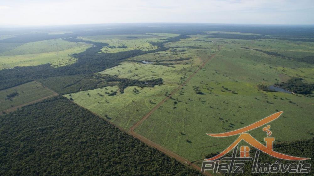 https://static.arboimoveis.com.br/FA0010_PLETZ/fazenda-no-estado-do-tocantins-para-venda1608218505905bfxgi.jpg