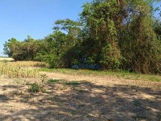Foto do Sítio-Sítio à venda, 60500 m² por R$ 1.200.000,00 - Jaguari - Limeira/SP