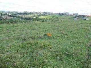 Foto do Sítio-Sítio rural à venda, Loyola, Limeira.
