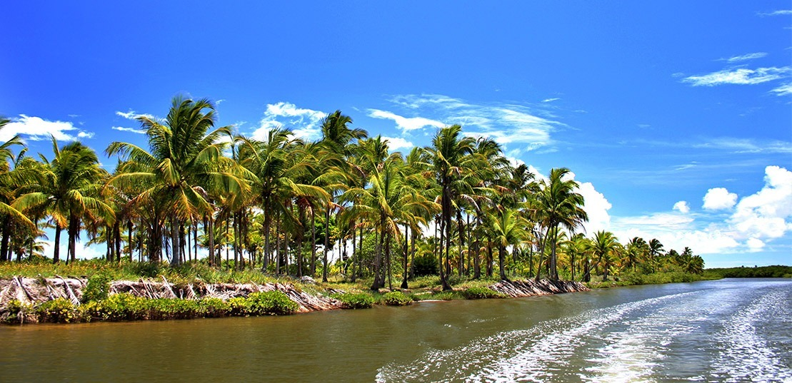https://static.arboimoveis.com.br/TE0010_REALLE/terreno-a-venda-belmonte-bahia-beach-village-belmonte1621361177740zwoew.jpg
