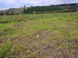 Foto do Terreno-Terreno residencial à venda, Quinta dos Vinhedos, Bragança Paulista/SP