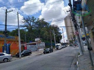 Foto do Terreno-Terreno para alugar, 1000 m² por R$ 30.000,00/mês - Macedo - Guarulhos/SP